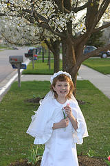 First Communion White Blossoms